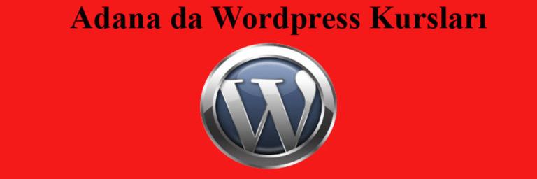 wordpress kursları Adana